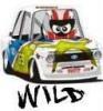 Аватар для Wild
